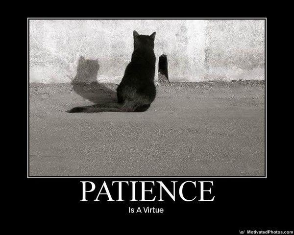 PATIENCE !